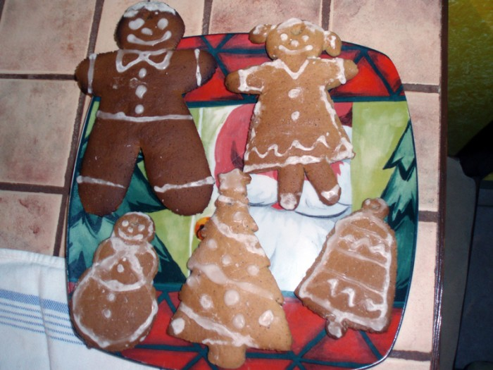 gingerbread-cookie
